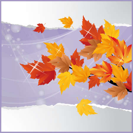 scrapping: Autumn card.   Illustration