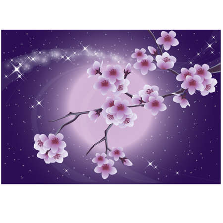 Sakura and moon, spring card