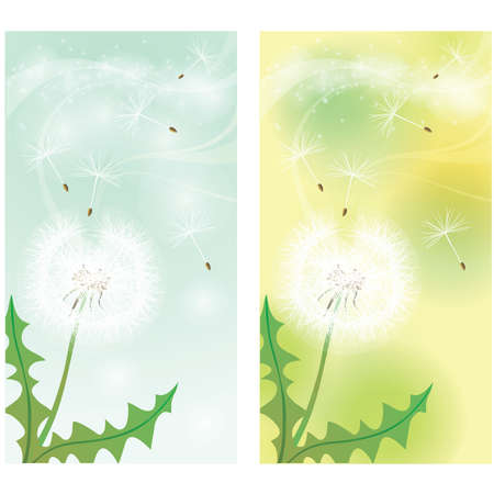 Spring banner. Dandelion seeds being blown in the wind Vector