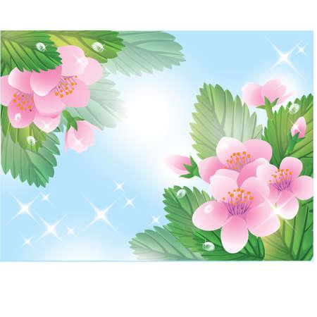 blase: Spring flower card. vector illustration