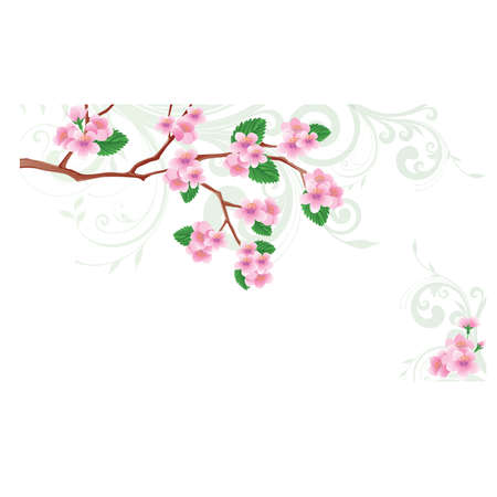 flowered: Spring card Flowered sakura. vector illustration