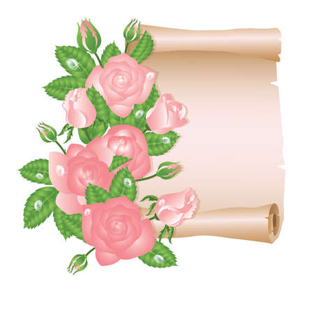 rolled: Love card with rose and old paper scroll. vector illustration