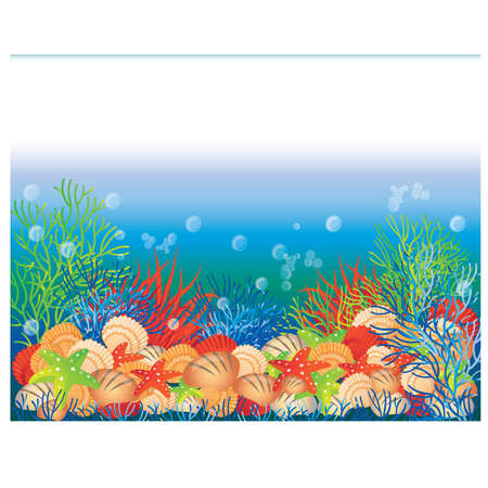 swimming underwater: Underwater banner, vector illustration