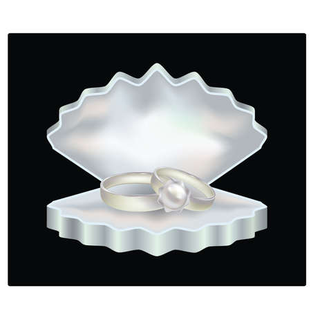 Pearl rings  in a shell-box for jewelry, vector illustration Stock Vector - 9524977