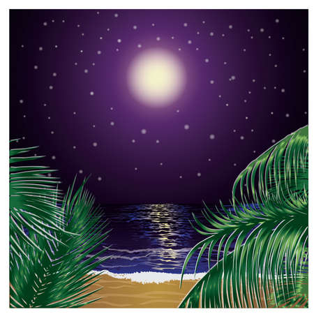 Tropical night  with palms Vector