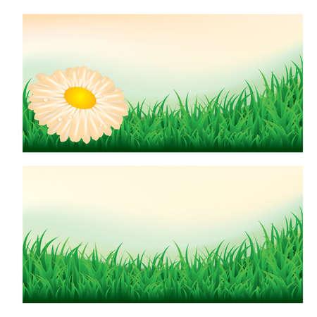 Summer meadow banners Stock Vector - 9804531