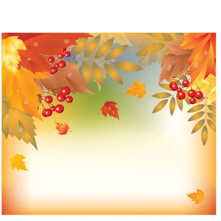 Beautiful Autumn Background, vector illustration  Vector