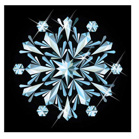 Precious snowflake, vector illustration Vector