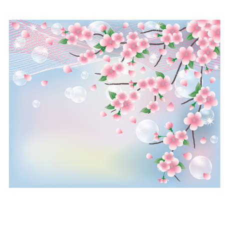 Spring card with sakura. vector illustration Stock Vector - 12201957
