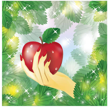 Beautiful female hand holding apple  vector illustration  Vector