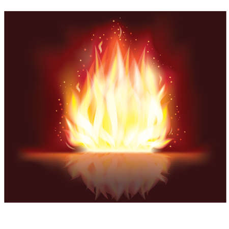 Fire flaming design , vector illustration Vector
