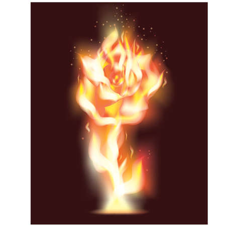 bonfire: Beautiful Rose flower from fire, vector illustration