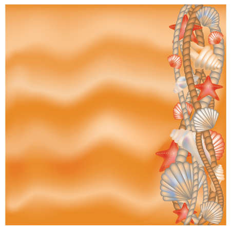 Seashells and rope border on sand  background  Vector