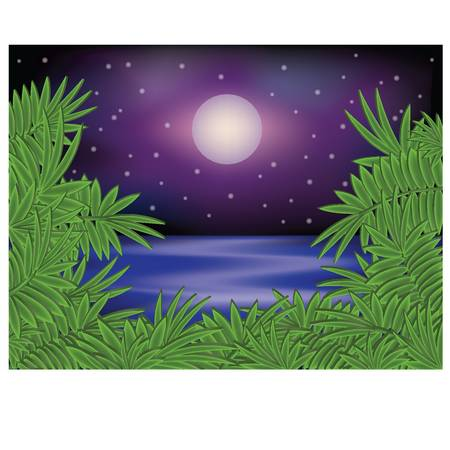 Tropical summer night card illustration Vector