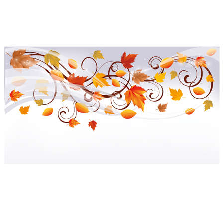 brown swirl: Autumn banner, vector illustration