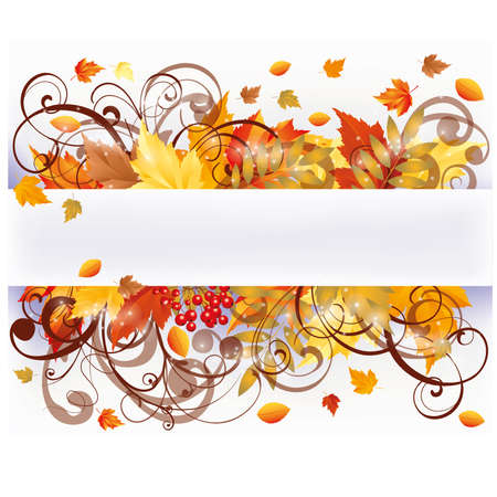 autumn background: Autumn seasons card, vector illustration