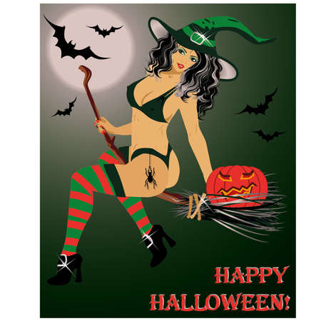 sexy costume: Halloween  witch flying on a broom , vector illustration