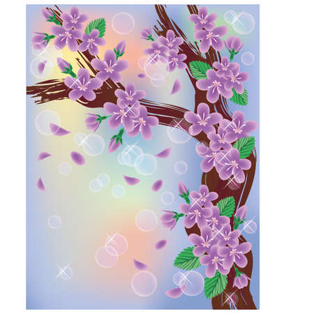 blossom time: Cherry blossoms on sky background, vector illustration