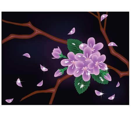 Cherry blossom card Stock Vector - 18021795