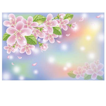 Spring cherry blossom card, vector illustration
