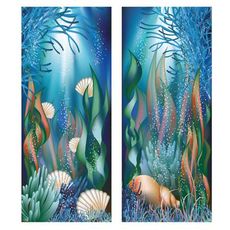 Underwater banners with cockleshells illustration Vector