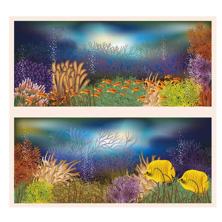seafish: Underwater world two banners Illustration