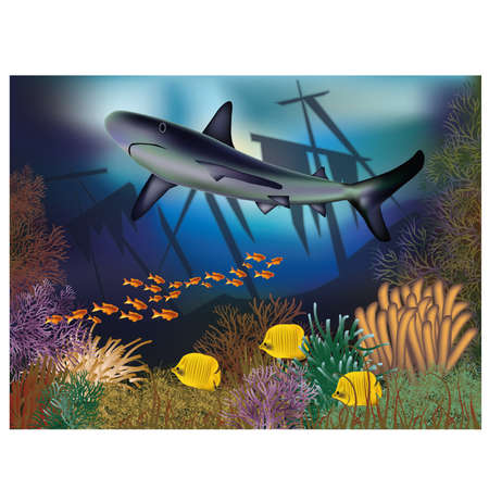 seafish: Underwater wallpaper with ship and shark
