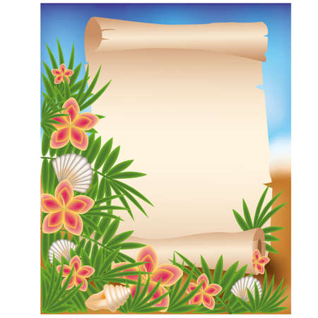 Blank paper scroll on summer tropical background, illustration Vector