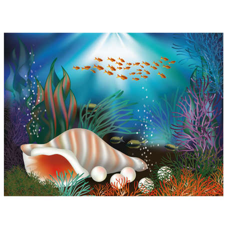 alga: Underwater world card with seashell and pearls illustration