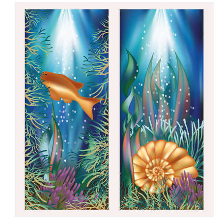 alga: Underwater world two banners with golden fish and seashell illustration