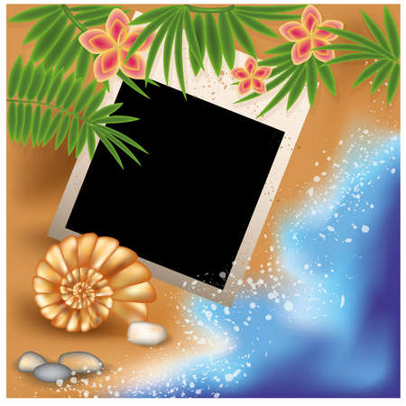 Summer photo frame with seashell and flowers Vector