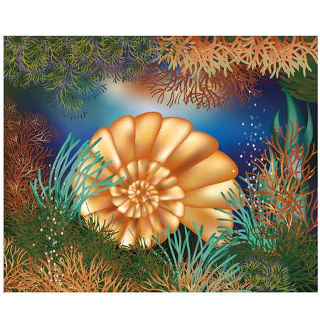 Wallpaper mundo submarino con concha de oro Ilustración de vector
