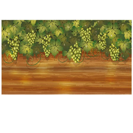 Grapes banner with wooden background, vector Vector