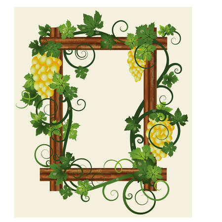 Wooden photo frame with grapes, vector illustration Vector