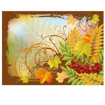 ashberry: Autumn banner with red rowan berry and maple leaves, vector illustration
