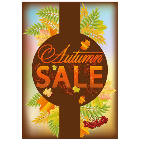 Autumn sale banner, vector illustration  Vector