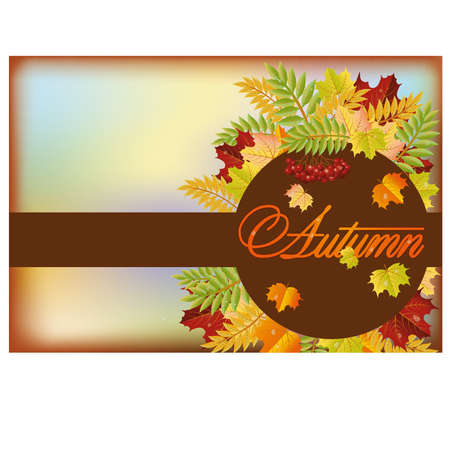 Autumn season  banner, vector illustration Vector