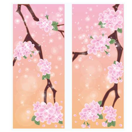 Spring sakura banners Vector