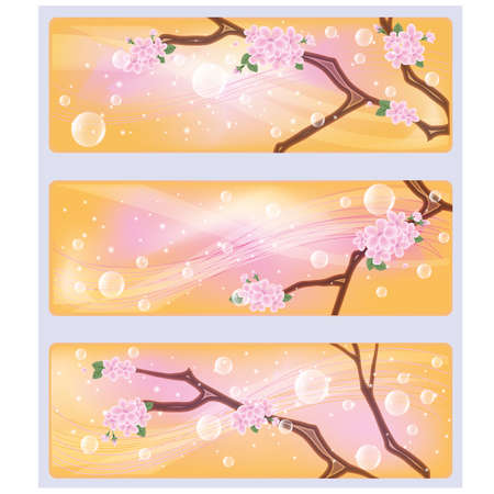 Spring sakura flowers banners illustration  Vector