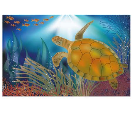 seafish: Underwater world wallpaper with turtle, vector Illustration