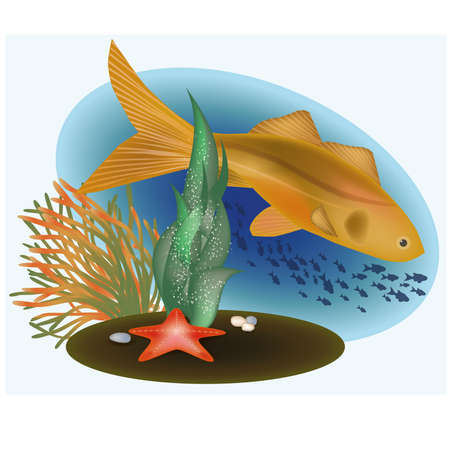 Marine life with golden fish, vector illustration