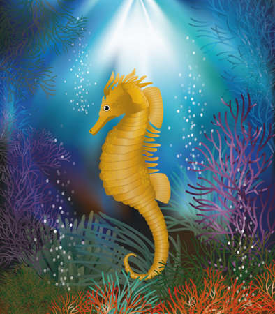 Underwater wallpaper with seahorse  vector illustration