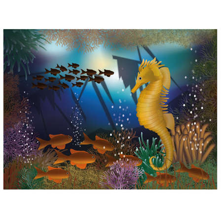seafish: Underwater wallpaper with seahorse and shipwrecks