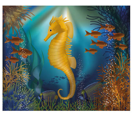 seafish: Underwater wallpaper with seahorse seafish, vector illustration