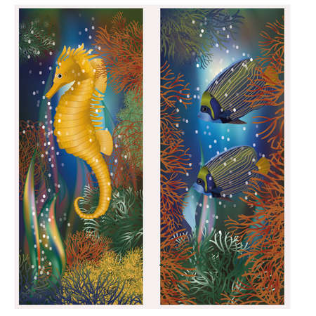 exotic fish: Underwater banners with seahorse and fish, vector illustration