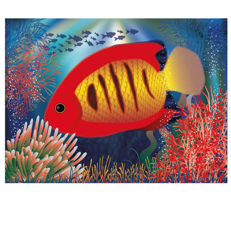 Underwater wallpaper with red tropical fish, vector illustration