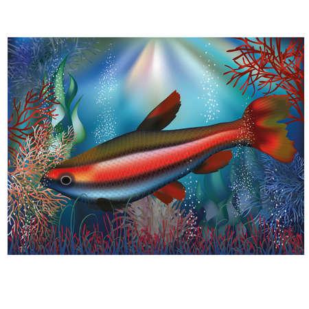 seafish: Underwater wallpaper tropical fish, vector illustration