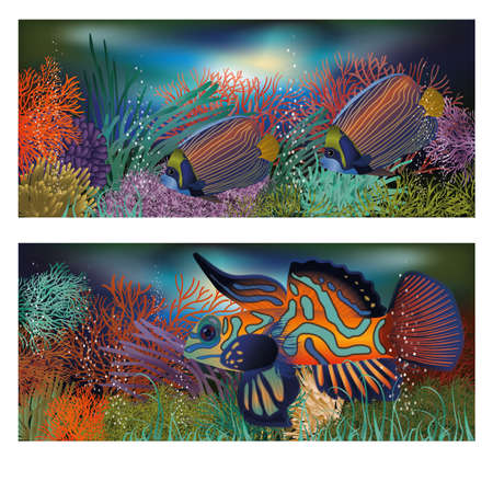 exotic fish: Underwater banners with tropic fish, vector illustration