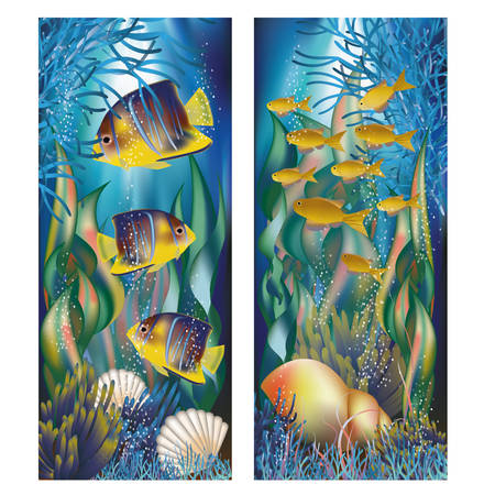 Underwater banners with shell and tropical fish, vector illustration Illustration