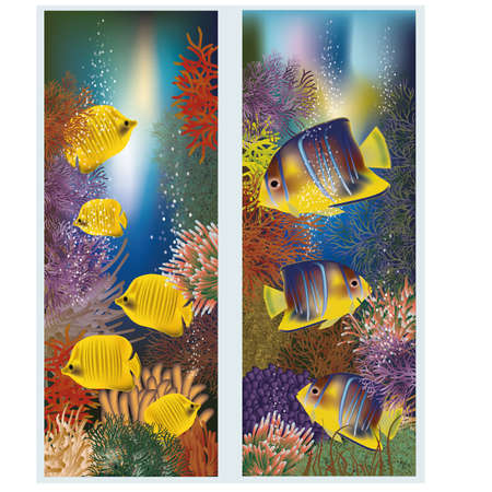 Underwater banners with yellow tropical fish, vector illustration Vector